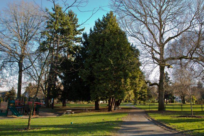 Roanoke_Park,_Seattle,_January_2013